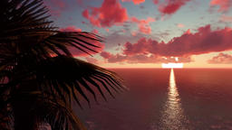 Tropical Palm Trees at Sunset Animation