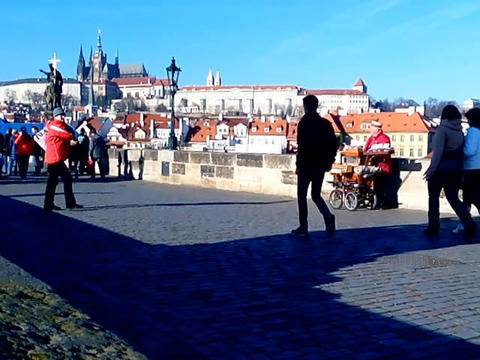 Organist on Charles Bridge ビデオ