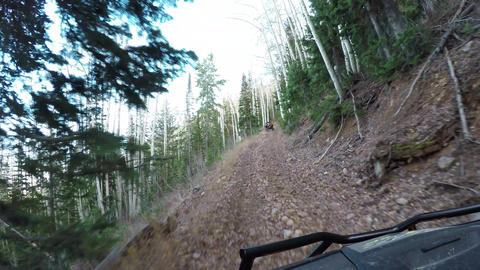 Pine forest mountain trail off road recreation POV 4K 942 Footage
