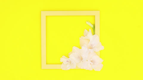 Yellow photo frame with flowers on yellow theme. Stop motion Animation