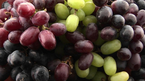 Bunches of grapes are ripe Stock Video Footage
