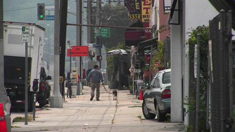 A man walks his dog Stock Video Footage