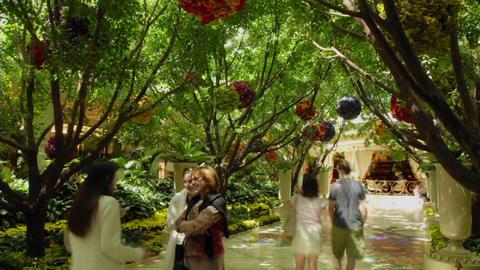 A time lapse of pedestrians walking through a garden Stock Video Footage
