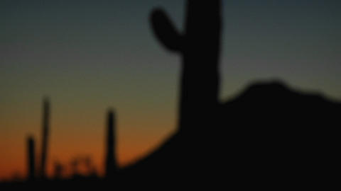 A desert scene at dusk is gradually brought into focus Stock Video Footage