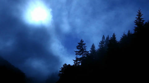 Fog rolls past a forested mountain top Stock Video Footage