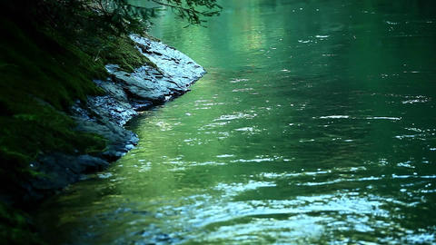 A river flows slowly through a forest Stock Video Footage