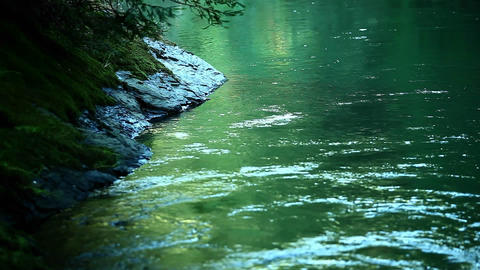A river flows slowly through a forest Footage