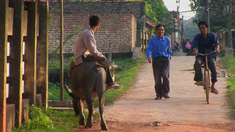 A man sits on a water buffalo and watches people pass in... Stock Video Footage
