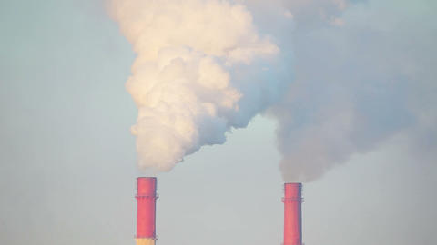 The smoke goes from pipes in the oil refinery Footage