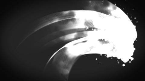 Sumi CG動画素材