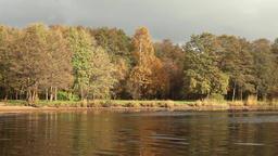 yellow autumn Landscape Footage