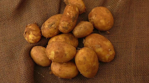 Raw potatoes on rustic hessian background Footage