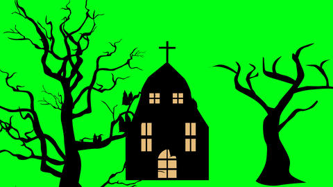 halloweeen scary scene, enchantress silhouette fly , green screen chroma key Animation