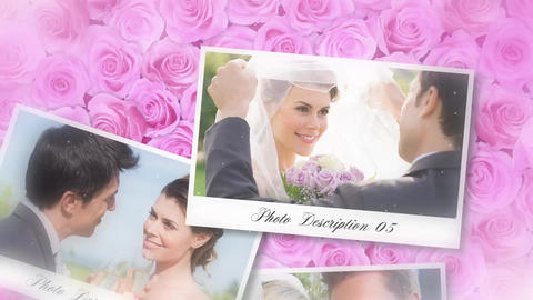 Roses Wedding Album After Effects Template
