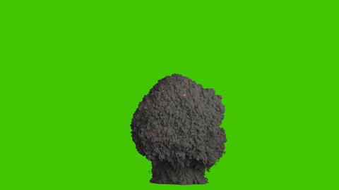 A powerful explosion with billowing black smoke. An explosion with black smoke, a bomb or fuel Animation