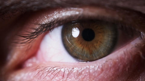 Male Eye Extreme Close up. Amazing Eyesight. Brown with Green eye. Slow motion Live Action
