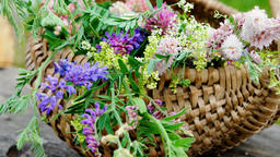 Wild flowers in a wicker basket Footage