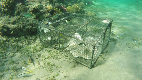 Environmental damage illegal fish net trap in sea Footage