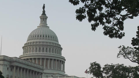 The Capitol Building in Washington DC is framed by trees Stock Video Footage