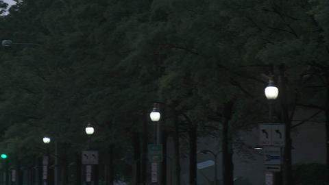 Pan across from a tree lined boulevard to the Capitol... Stock Video Footage