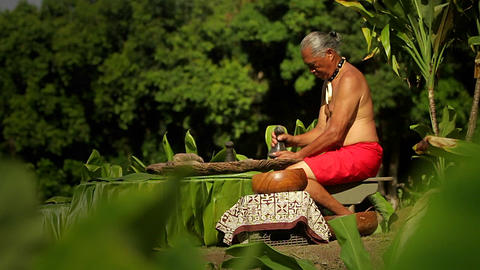 A Hawaiian native prepares tarot root with his han Footage