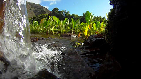 Pure fresh clean water pours down a stream and int Footage