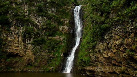 A small tropical waterfall in a jungle setting Stock Video Footage