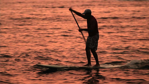 A man paddle surfs across a lagoon at sunet Footage
