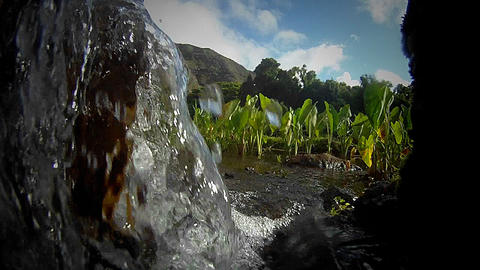 Issues surrounding water are shown in this clip of Stock Video Footage