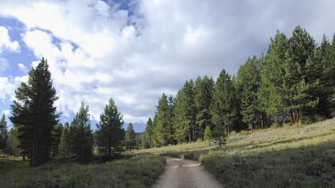 Time lapse of clouds moving over a forest and dirt Stock Video Footage