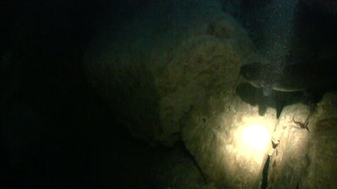 Cave divers follow a fish using a searchlight Stock Video Footage