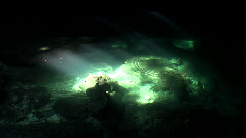 Green pools glimmer in the sunlight at the bottom Stock Video Footage