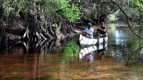 Two men row a canoe through the Florida Everglades Footage