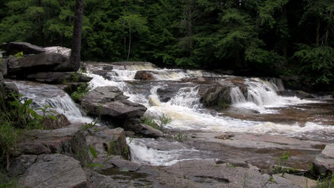 A waterfall flows through the forest in New Hampsh Footage