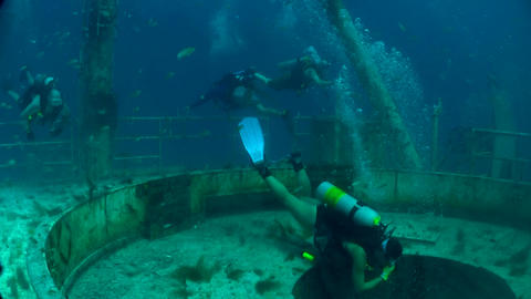 Divers swim around a shipwreck Footage