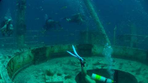 Divers swim around a shipwreck Stock Video Footage