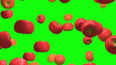 Tomato vegetable green screen loop animation Videos animados