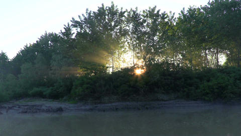Morning on the river, birds singing segment 2 Live Action