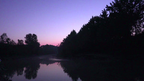 Morning on the river with birds singing Footage