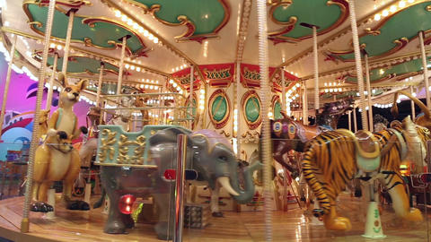 The carousel at the amusement park