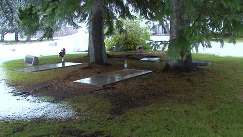 Ernest Hemingway s grave Ketchum Idaho 1 Footage