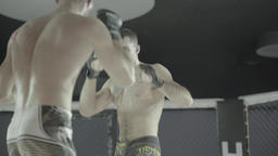 MMA. Cage fighting in action Footage