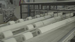 Rolls of paper are transferred to the conveyor at the plant Live Action