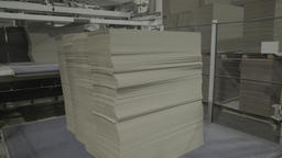 A stack of cardboard on the conveyor belt at the plant Live Action