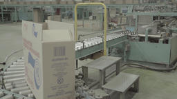 Boxes move along the conveyor belt at the plant Live Action