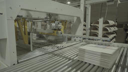 Conveyor and machine works factory Live Action
