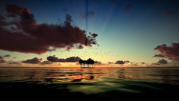 Trpical island isolated by water, seagulls flying, timelapse sunrise Footage