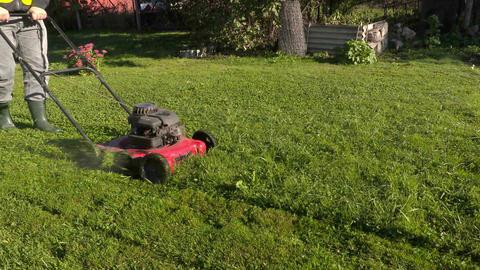 Worker pushing lawnmower in garden Footage
