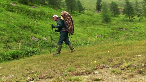 Traveler Walking Along Green Valley Footage