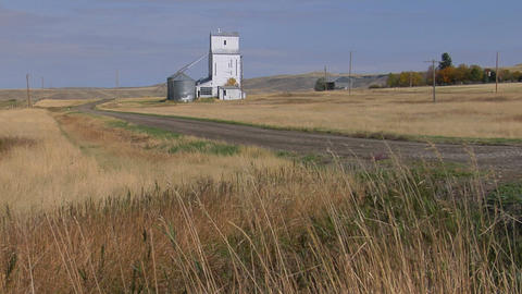 The wind blows the grass on the prairie Stock Video Footage